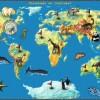 World Riddles : Animals